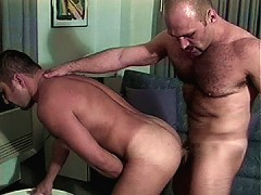The long hairy dick of the law is buried inside his tight ass to the cop's liking